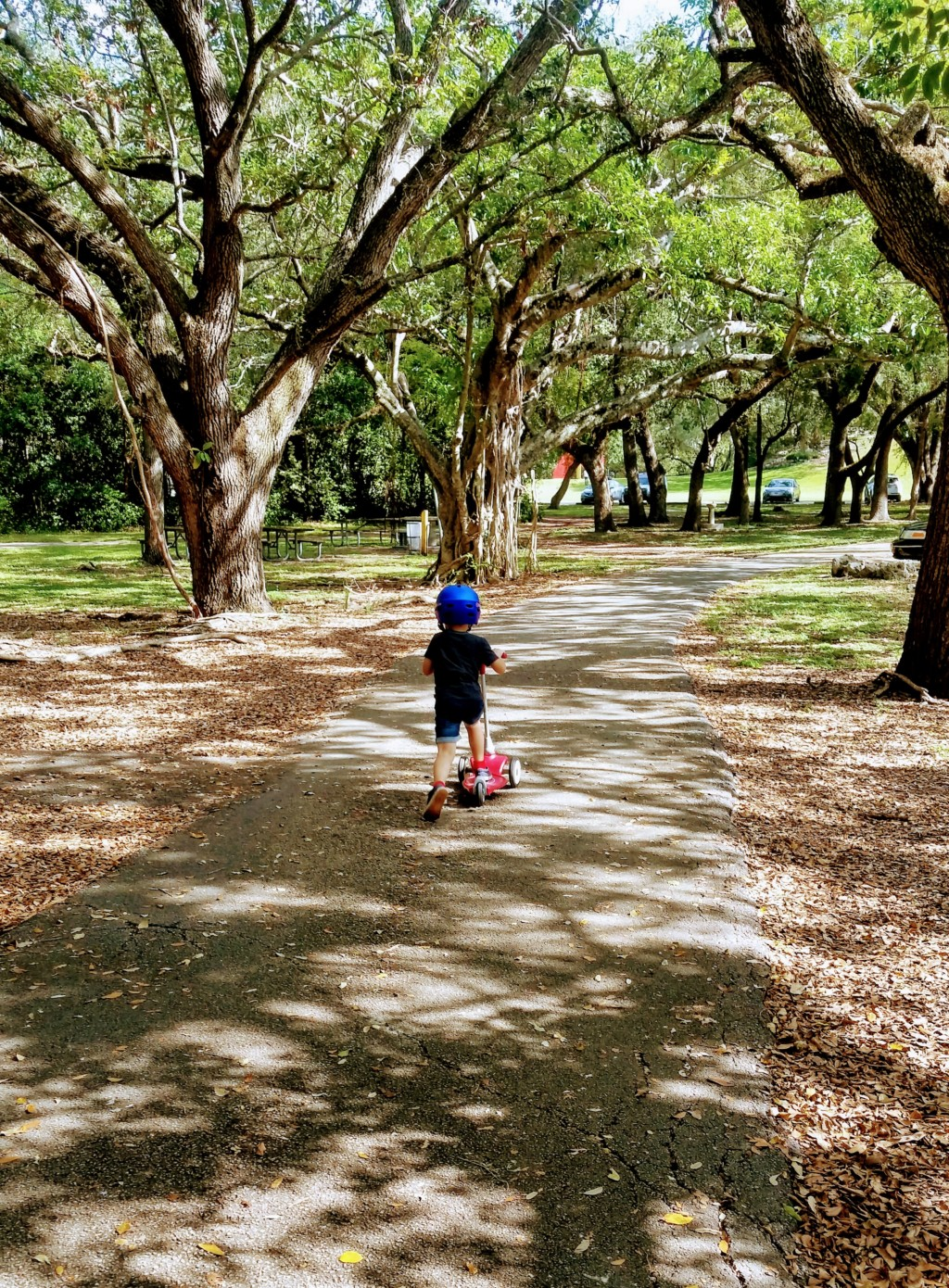 My 5-year old son riding his scooter during some recent time together at Greyolds Park Miami Moms Blog