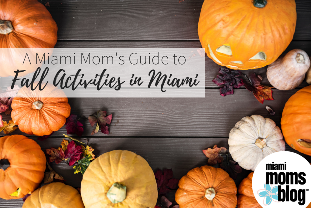 Fall Guide Activities Miami Moms Blog