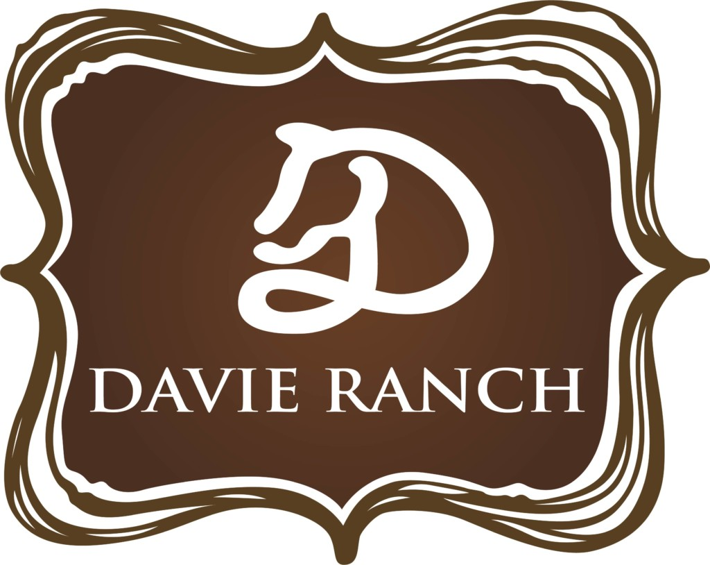Davie Ranch Miami Moms Blog Party Planning Guide