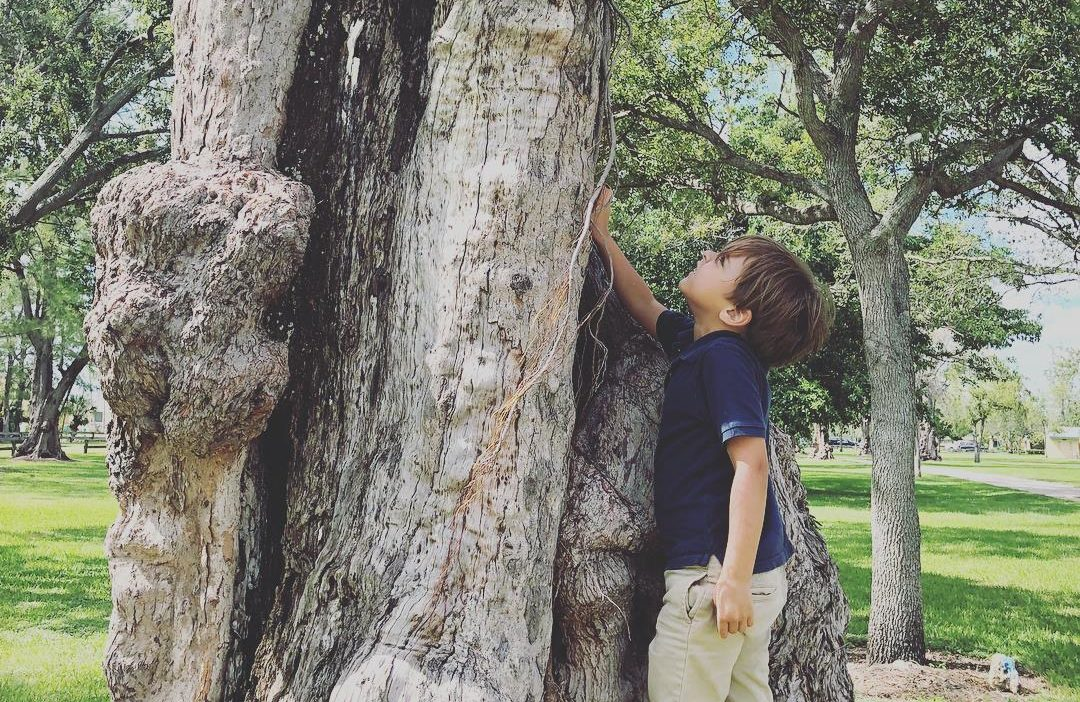 Earth Day: 10 Fun Activities You Can Do With Your Kids Lissette Fernandez Contributor Miami Moms Blog
