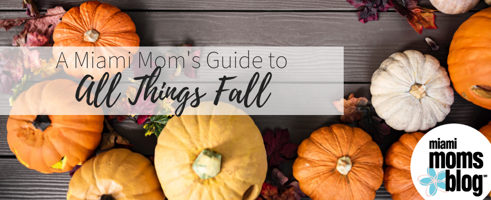 miami moms blog fall guide pumpkin patches
