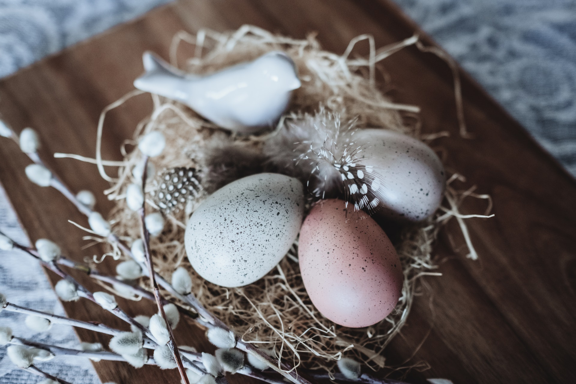 Tip-Toeing Towards an Empty Nest: Questions & Unexpected Answers Becky Gonzalez Contributor Miami Moms Blog