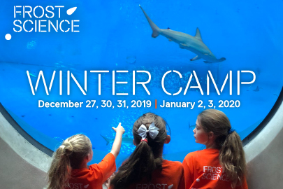 Winter Camps & Workshops Phillip and Patricia Frost Museum of Science Winter Camp The 2019 Ultimate Guide to Holiday Events and Activities in Miami Miami Moms Blog