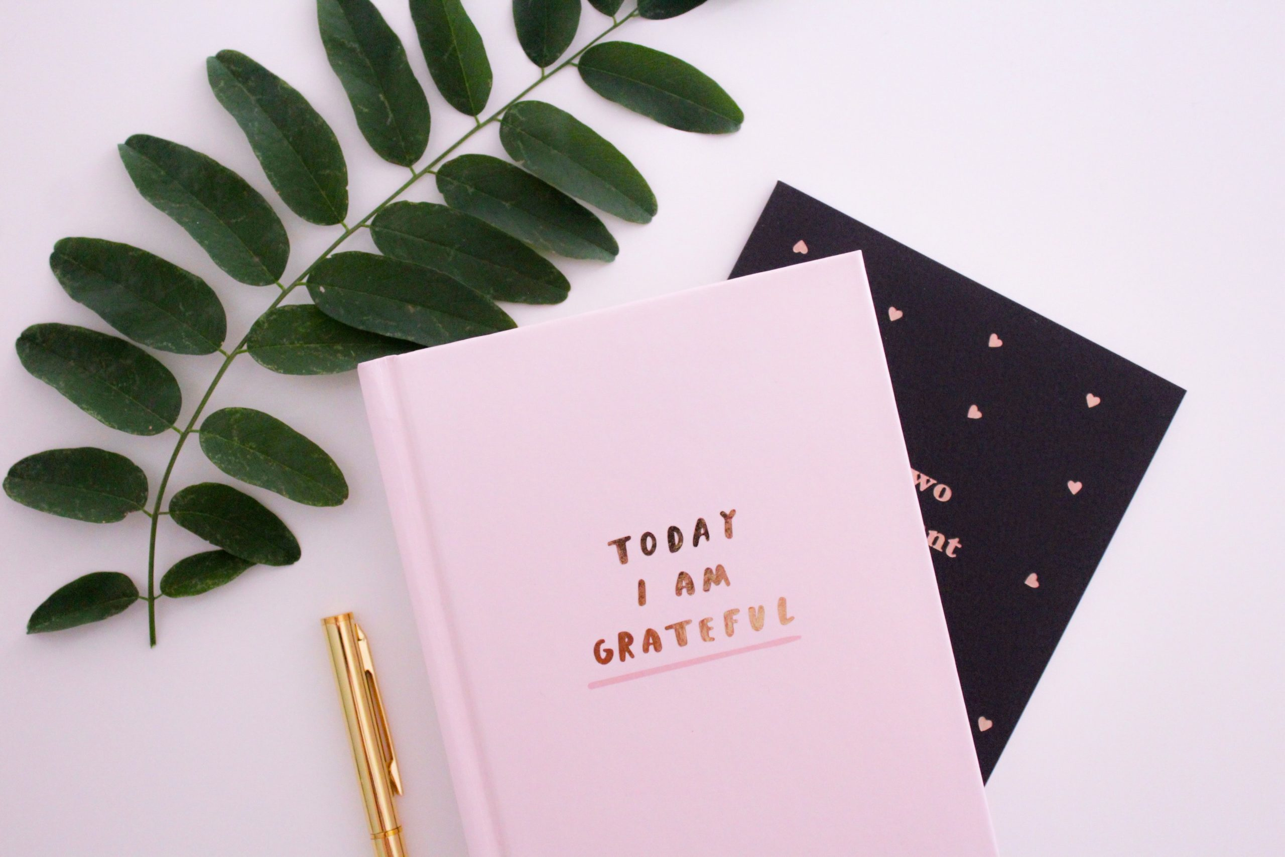 Gratitude Journal New Year, New Attitude of Gratitude (and There's an App for That)! Gina Hickey Contributor Miami Moms Blog