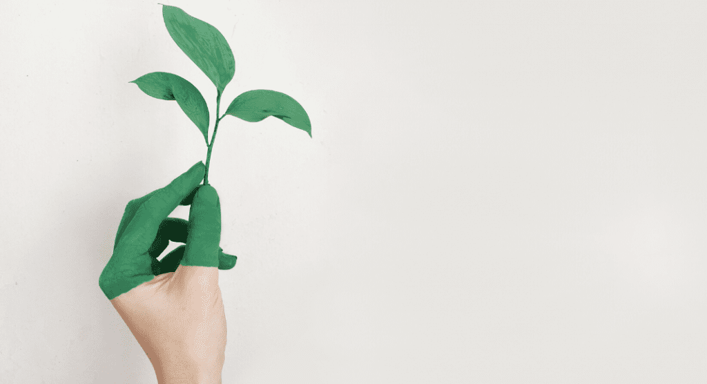 Eco-Friendlier Moms and Families: Quick Ways to Be a Little Greener Ana-Sofia DuLaney Contributor Miami Mom Collective