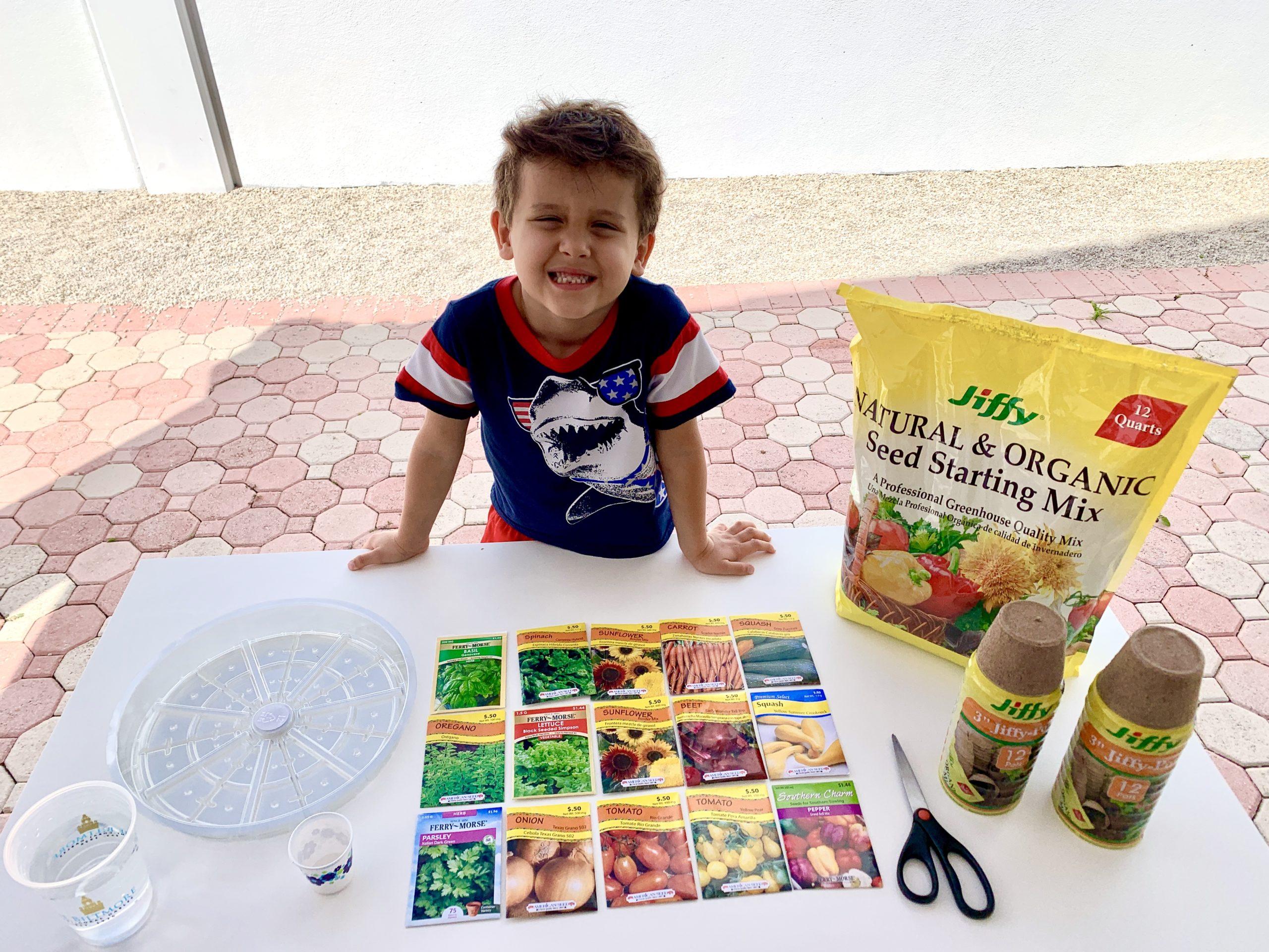 Horta caseira: atividade educativa e divertida para fazer com as crianças