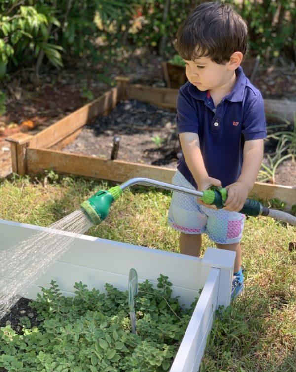 At Home Gardening - Ana-Sofia DuLaney