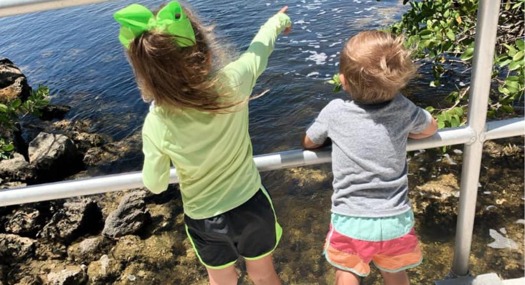 Black Point Marina and Park: Mommy's Hidden Gem Dianna Hill Contributor Miami Moms Blog
