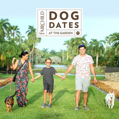 Fall Events & Activities Guide: Things To Do Around Miami Miami Mom Collective Becky Salgado