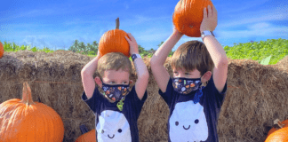 Halloween 2020: Creative Ways to Have Fun & Keep the Spirit Alive Stacey Geiger Contributor Miami Mom Collective