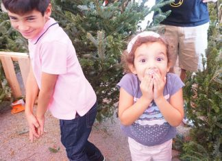 girl excited picking christmas tree