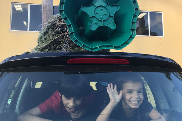 kids in back of car with Christmas tree on top