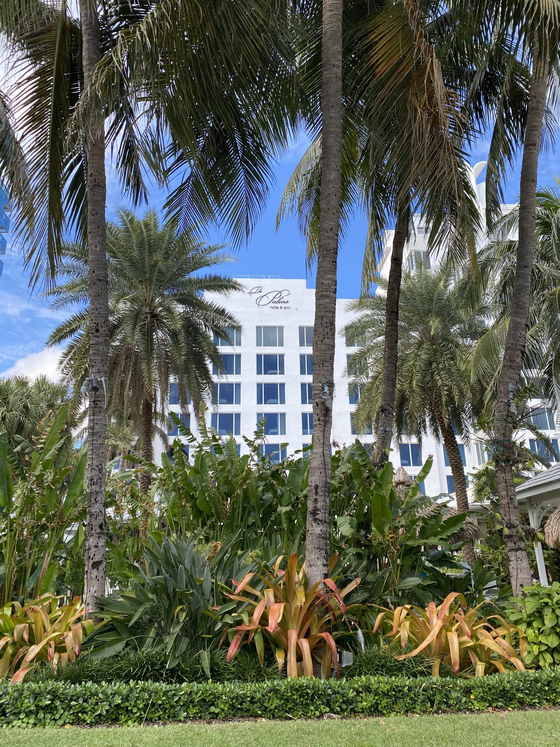 The Palms Hotel & Spa: Staycation or Vacation in Miami Beach Miami Mom Collective