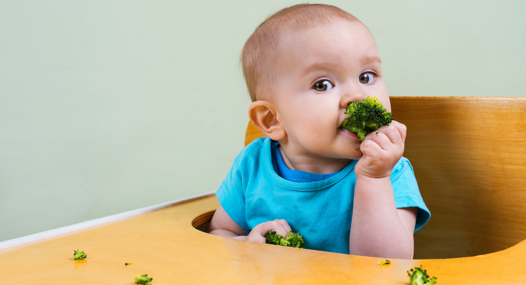 A baby girl trying some solid food (Overcoming My Solid Feeding Fears: A Journey of an Anxious Mom Andrea Wood & Cindy Herde Contributors Miami Mom Collective)