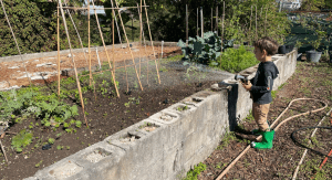Kristina's son watering their garden (Making Changes: Taking A Step Back In Order To Move Forward Kristina Fiorentino Contributor Miami Mom Collective)