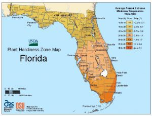 USDA Plant Hardiness Zone Map (Florida Garden: Start Yours During National Gardening Month Aymee Blanco Contributor Miami Mom Collective)