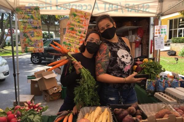 South Miami farmers market (Love Where You Live: Why I Love Living in South Miami Kristen Llorca Contributor Miami Mom Collective)