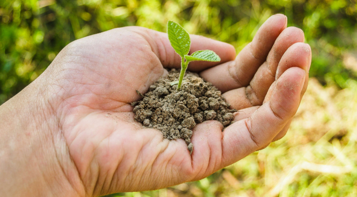 A handful of soil (Earth Day: 5 Meaningful Ways to Celebrate! Ana-Sofia DuLaney Contributor Miami Mom Collective)