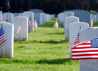 American flags in a cemetery (Memorial Day: Making It Memorable for the Whole Family Rachel Hulsund Contributor Miami Mom Collective)