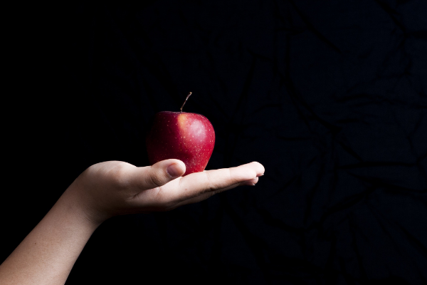 A child's hand holding an apple (Lorena Lougedo Contributor Miami Mom Collective)