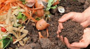 A compost pile (Composting: What You Need to Get Started Kristina Fiorentino Contributor Miami Mom Collective)