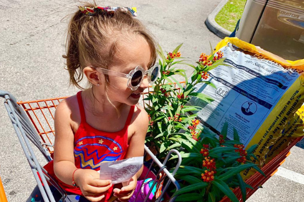 Shopping for butterfly plants (Butterfly Gardening in South Florida Jessica Alvarez-Ducos Contributor Miami Mom Collective)
