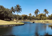 Miami Lakes (Love Where You Live: Why I Love Living in Miami Lakes Jacqueline Jebian Garcia Contributor Miami Mom Collective)