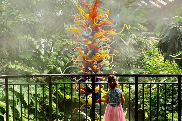 Summer Bucket List Fairchild Tropical Garden MMC Contributor Jessica Alvarez-Ducos
