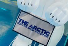Now Showing at MODS! The Arctic: Our Last Greatest Wilderness
